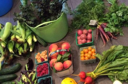 Toronto Farmers' Markets